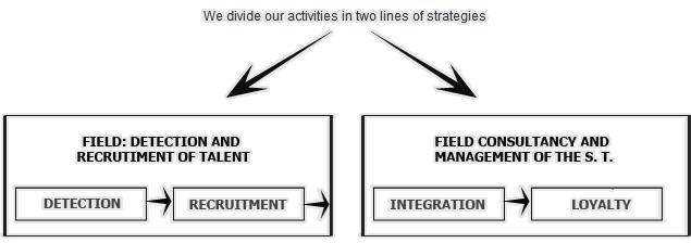 expertise-fields